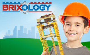 Brixology 003 Tower Bricks Boy Construction B